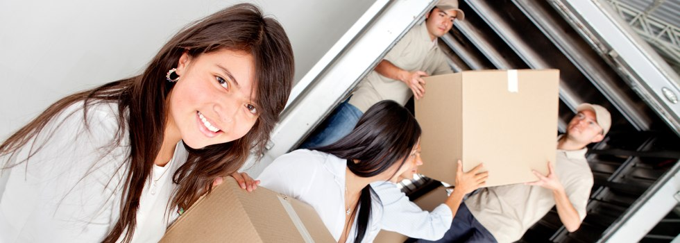 Professional Removalists Albany Creek